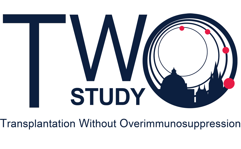 TWO Study logo (blue text)
